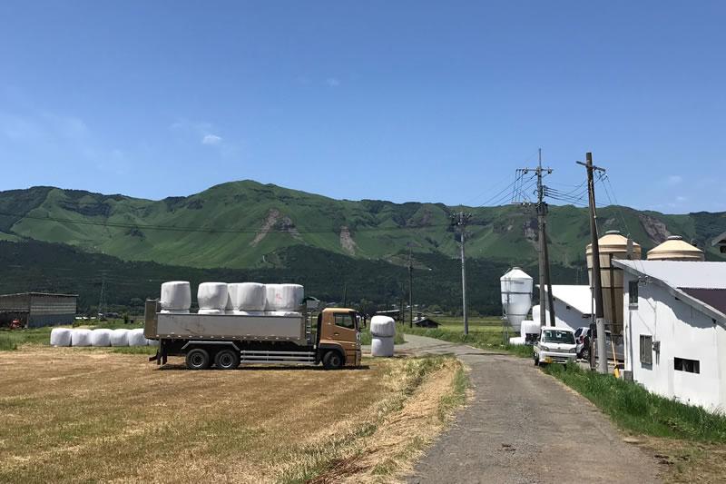 熊本阿蘇農場
