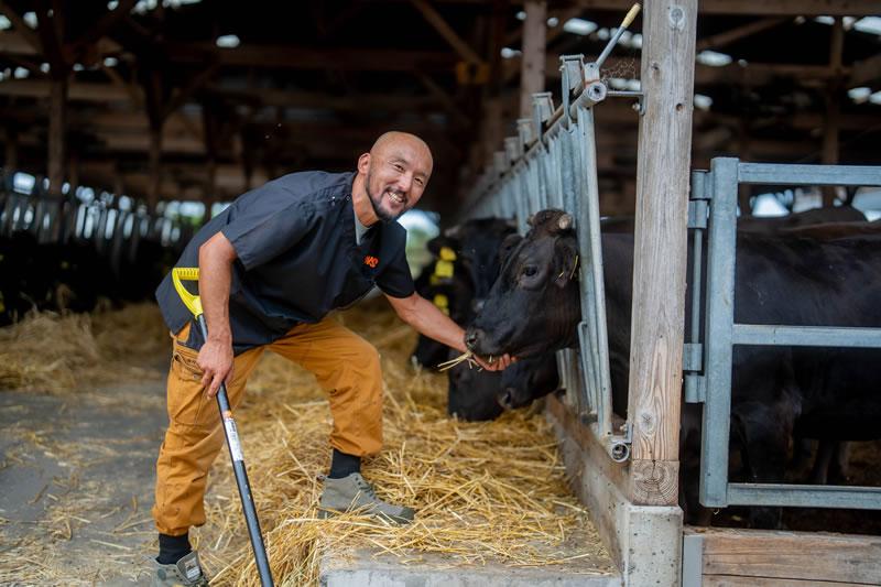 (株)ランズ 牛との触れ合い